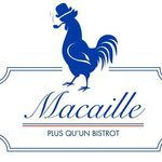 Macaille